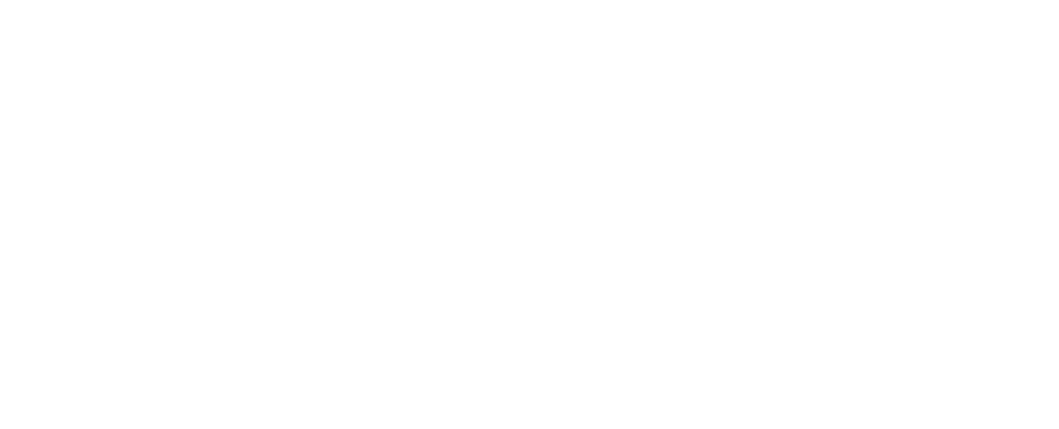 Avlier logo in white
